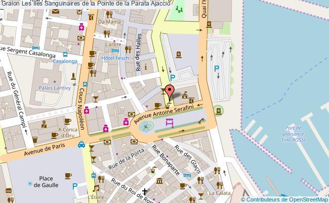 plan Les Iles Sanguinaires De La Pointe De La Parata Ajaccio