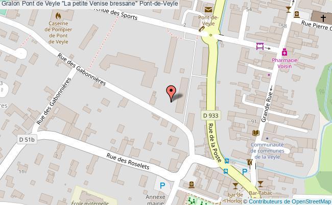 """plan Pont De Veyle """"la Petite Venise Bressane"""" Pont-de-veyle"""