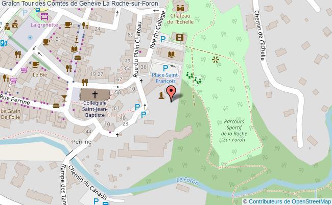 Tour des comtes de gen ve la roche sur foron tourisme - Office du tourisme la roche sur foron ...