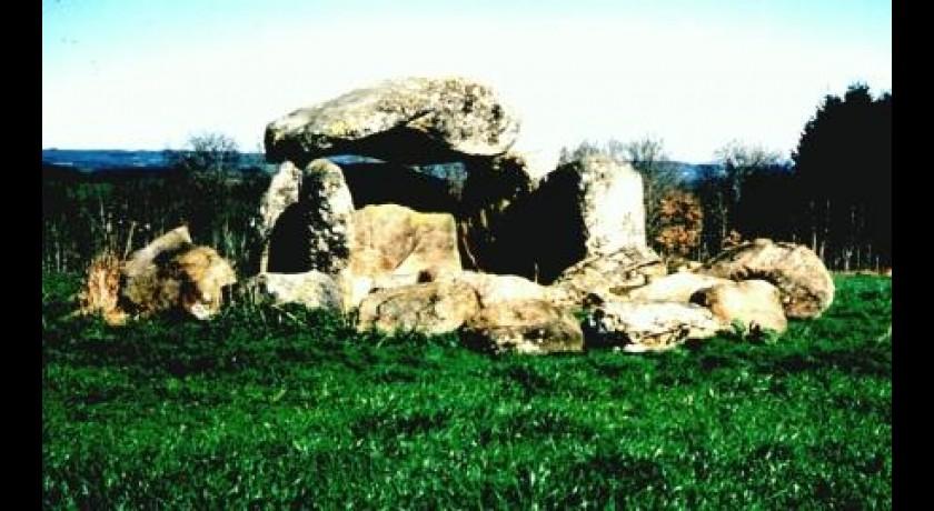 Le dolmen de la croix blanche felletin tourisme monuments for Le bureau croix blanche