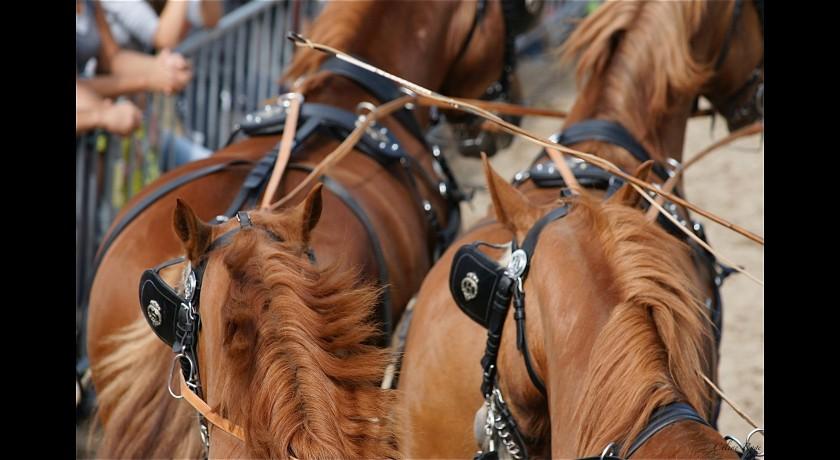 randonnee equestre uzes