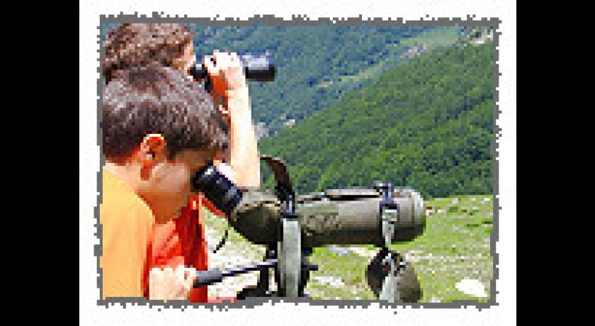 Observatoire de la montagne orlu tourisme d couverte de la for Site edf ejp observatoire