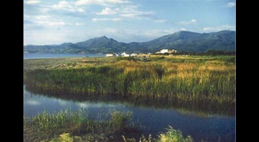 R serve naturelle nationale du mas larrieu argel s sur mer tourisme parcs et jardins - Argeles office du tourisme ...